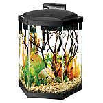 Aqueon® 20 Gallon Hex Aquarium Starter Kit