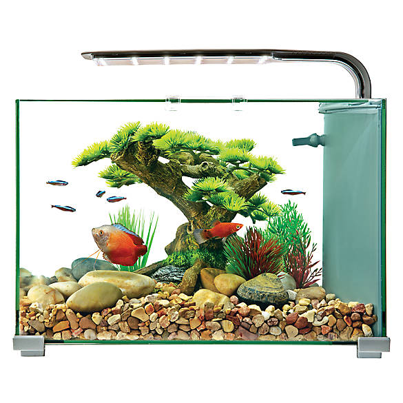 Top fin 5 gallon glass aquarium fish starter kits for Fish tank top