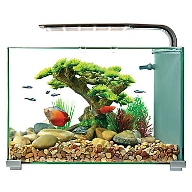 Top fin 5 gallon glass aquarium fish starter kits for 20 gallon fish tank size