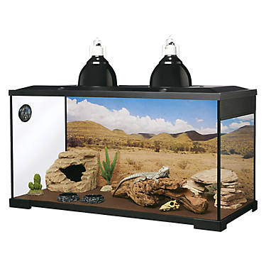 All Living Things Reptile Decor