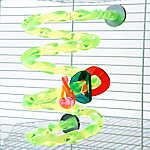 Grreat Choice® Spiral Perch Bird Toy