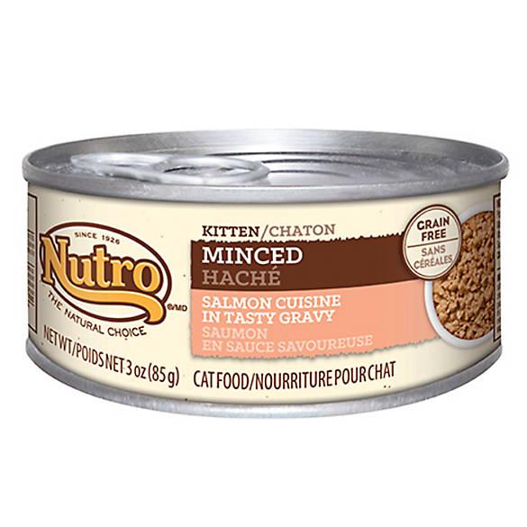 Nutro 174 Minced Salmon Kitten Food Cat Wet Food Petsmart