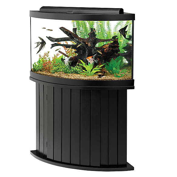 Aqueon 54 gallon aquarium ensemble fish aquariums for Where can i buy fish near me