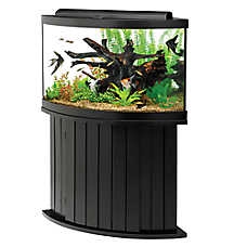 aqueon 54 gallon aquarium ensemble fish aquariums