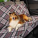 Top Paw® Plaid Fashion Rear Seat Protector