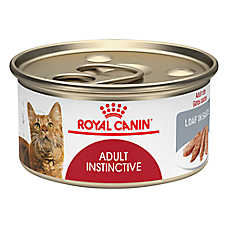 save 10¢ ea. when you buy 10+ entire stock Royal Canin® cat food, 3-5-8 oz. cans & pouches