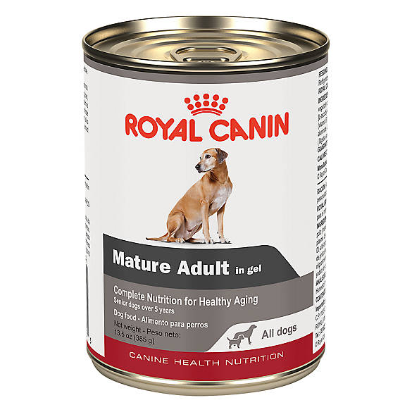 Royal Canin Canned Dog Food Online