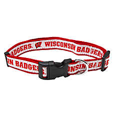 Wisconsin Badgers NCAA Dog Collar