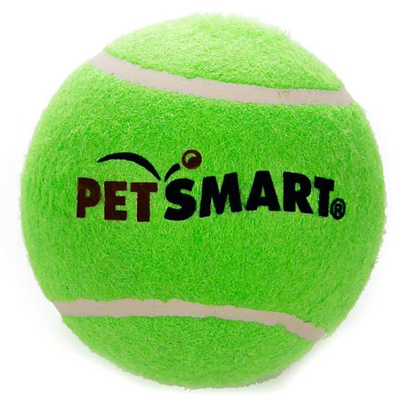 Grreat Choice Petsmart Jumbo Tennis Ball Dog Toy Color Varies