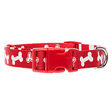 Top Paw® Classic Bone Stripe Dog Collar