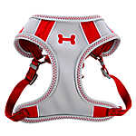 Top Paw® Sporty Comfort Adjustable Dog Harness