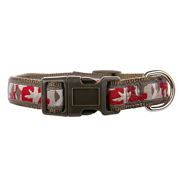 Camo Dog Collars Petsmart