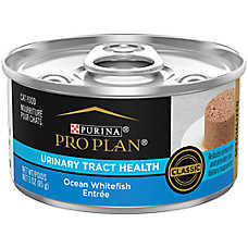 Purina® Pro Plan® Focus Adult Cat Food - Urinary Tract Health, Ocean Whitefish