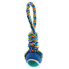 Top Paw® Rope Loop with Tennis Ball  Dog Toy