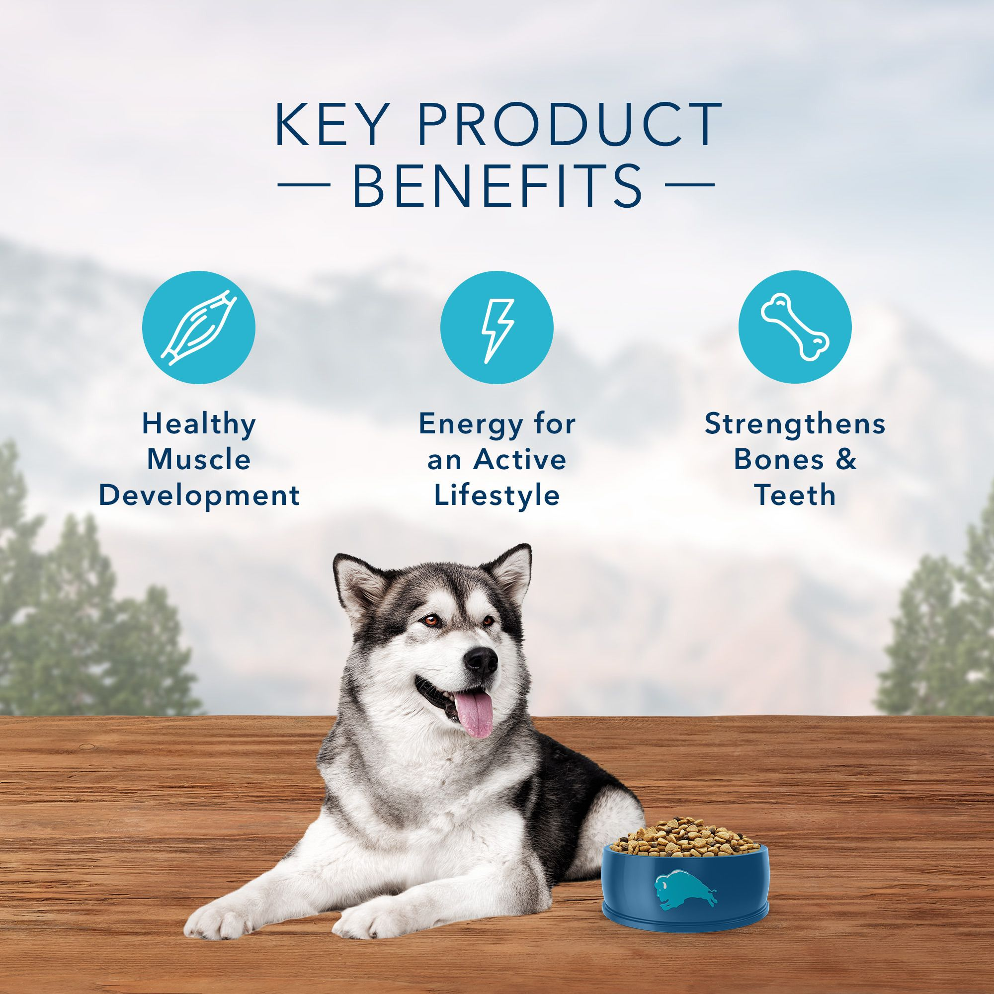 Blue Buffalo Wilderness Dog Treat Variety Pack 2 Flavors Denali Blend 8-Oun...