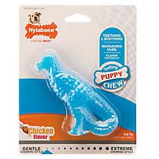 Nylabone® Puppy Dinosaur Dog Toy