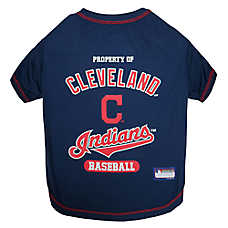 5529d8791 Cleveland Indians MLB Team Tee