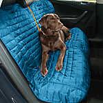 Kurgo Loft Bench Seat Cover