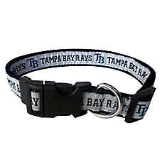 Tampa Bay Rays MLB Dog Collar