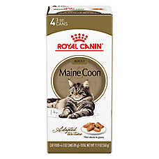 Royal Canin® Bone & Joint Health Adult Cat Food - Maine Coon