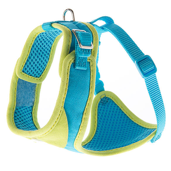 how to put on a top paw dog harness
