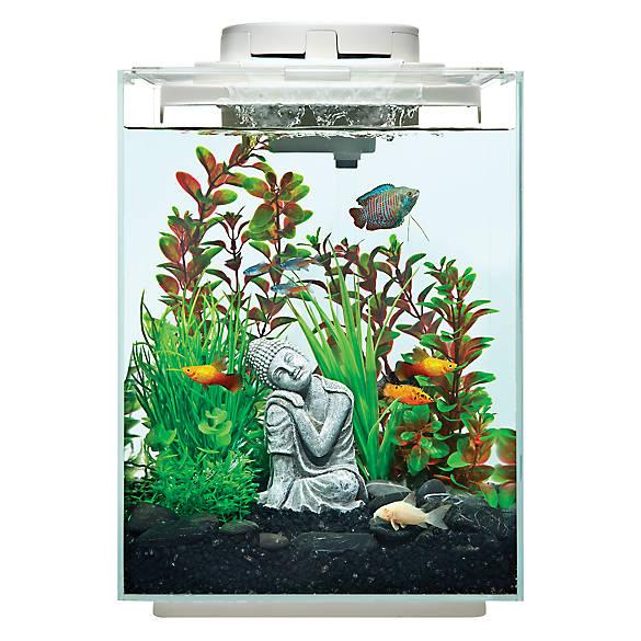 Top Fin Revival Waterfall Desk Aquarium 5 Gallon Fish Starter Kits Petsmart