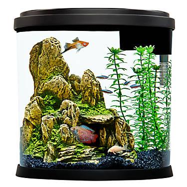 top fin 3 5 gallon enchant aquarium fish starter kits petsmart