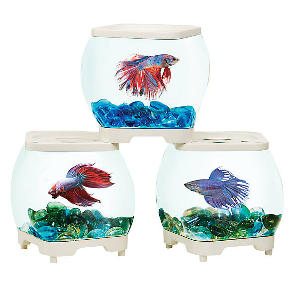 Top fin stackable studio betta tank fish aquariums for Betta fish tanks petsmart