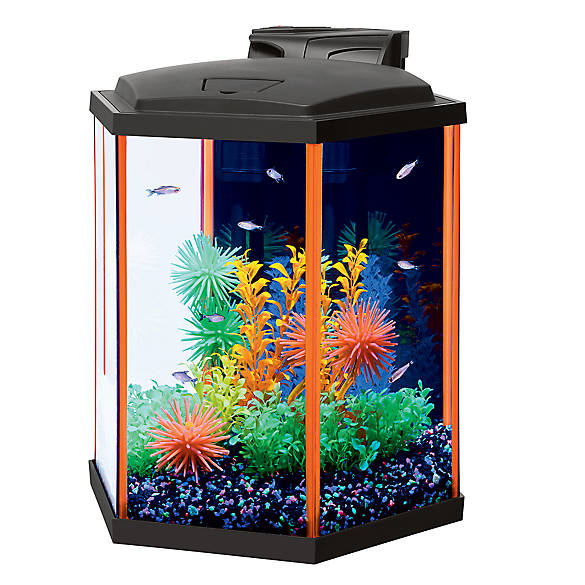 Aqueon neo glow hexagon starter kit fish starter kits for Fish tank starter kit