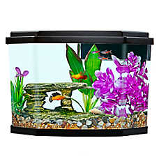 Top Fin® Delight Aquarium - 3.5 Gallon