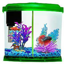 Top fin 1 gallon liquidy split aquarium kit fish for How to keep fish tank clean without changing water