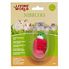 Living World Strawberry Loofah and Wood Chews