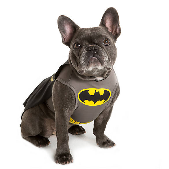 DC Comicsu0026trade; Batman Pet Costume  sc 1 st  PetSmart & Dog Costumes: Shop Small u0026 Large Dog Costumes | PetSmart