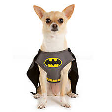 DC Comics™ Pet Halloween Batman Harness