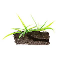 Top Fin® Mopani Wood with Plants Aquarium Ornament
