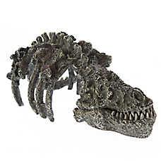 All Living Things® Dinosaur Skeleton Fossil Reptile Ornament