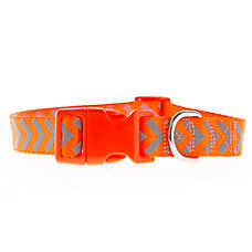 Top Paw® Refelctive Arrows Dog Collar