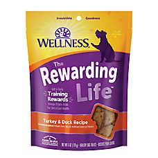 Wellness® Soft Wellbites Dog Treat - Natural, Grain Free, Turkey & Duck