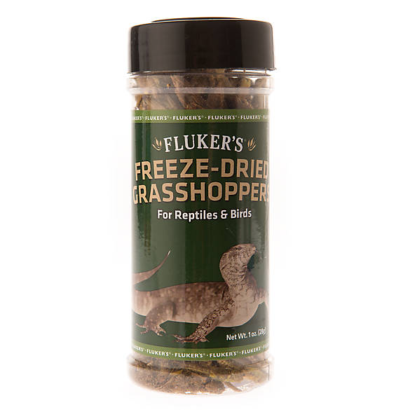 Fluker's® Freese Dried Grasshoppers | Tuggl
