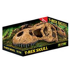 Exo Terra® T-Rex Skull Fossil Hideout