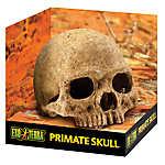 Exo Terra® Primate Skull