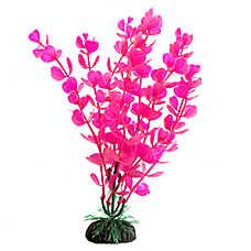 Top Fin® Pink and Aquarium Plant