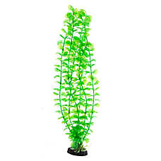 Top Fin® Green Seaweed Aquarium Plant