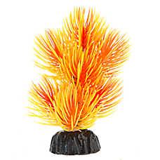 Top Fin® Orange Fuzzy Navel Mini Aquarium Plant