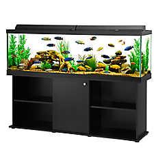 Fish Tanks Amp Aquariums Petsmart