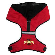 Iowa State Cyclones NCAA Dog Harness