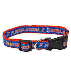 Florida Gators NFL Dog Collar
