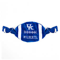 Kentucky Wildcats NCAA Flattie Crinkle Football Toy