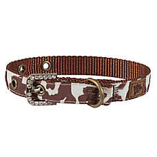 MuttNation Cowhide Print Dog Collar