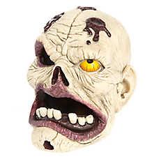 Top Fin® Zombie Skull